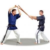 Yoseikan/Taekwondo